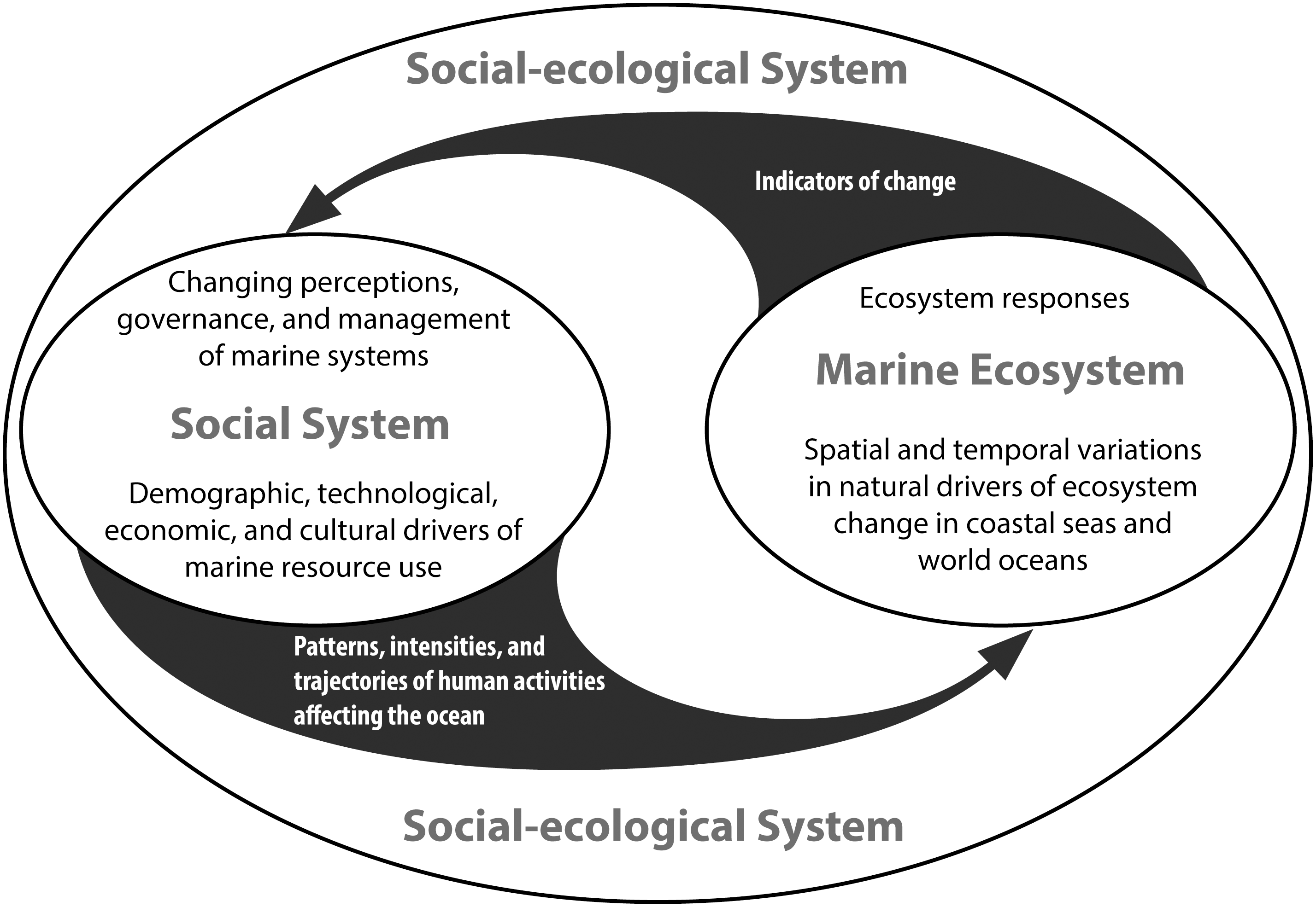 social ecology essays Sociology essays is all this social theory making you feel a bit queasy well, why not try to digest it in easy-to-manage bite-sized portions below are buttons which provide links to the central themes or ideas in the works of marx & weber.