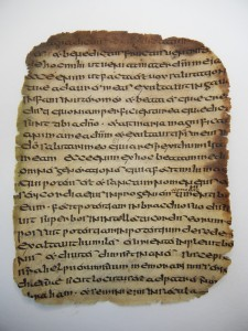 Fig. 3 Ms 55 f.81r (before treatment), the edges of the parchment have been badly damaged but the centre of the folios is still in perfect conditions after 1500 years.