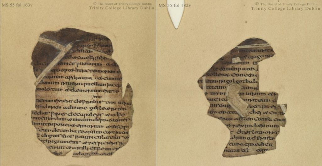 Figures 3 and 4 Codex Usserianus Primus still inlaid in paper and with paper repairs obscuring part of the text, TCD MS 55, ff. 163v (left), 182v (right) © The Board of Trinity College Dublin, the University of Dublin. 2015.