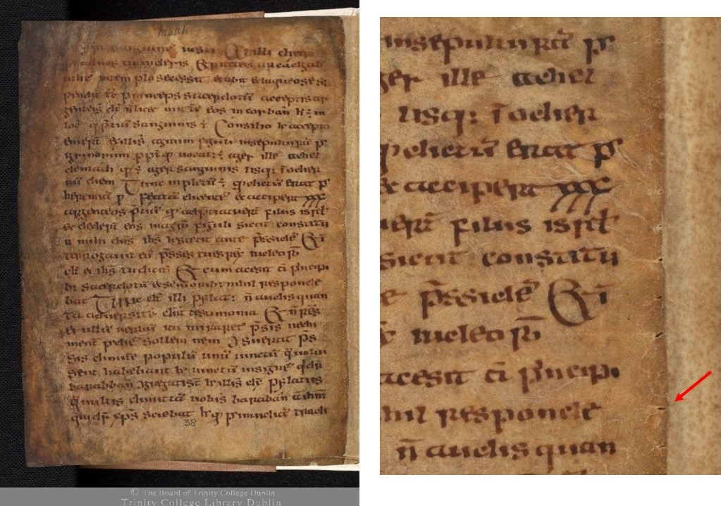 The Garland of Howth, 8th-9th century, TCD MS 56, f. 38v © The Board of Trinity College Dublin, the University of Dublin. 2015.