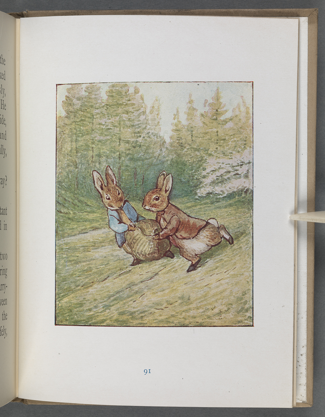 Potter's illustration of Benjamin Bunny and Peter Rabbit