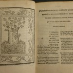 Ariosto: Orlando furioso (Ferrara, 1516). Shelfmark: Quin 38