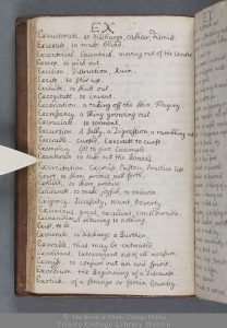 Esther Johnson's autograph word-book. TCD MS 11324
