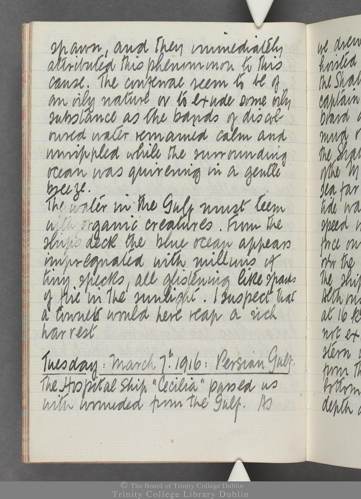 TCD MS 10515 folio 14v