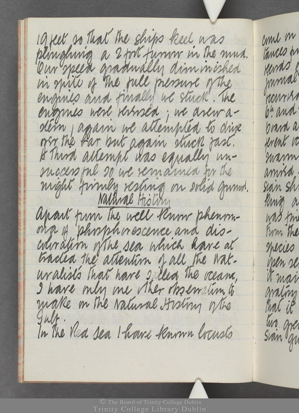 TCD MS 10515 folio 15v