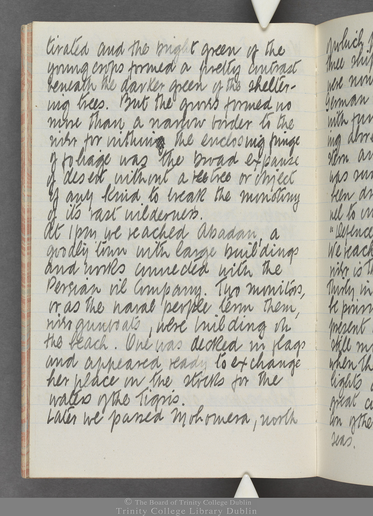 TCD MS 10515 folio 17v