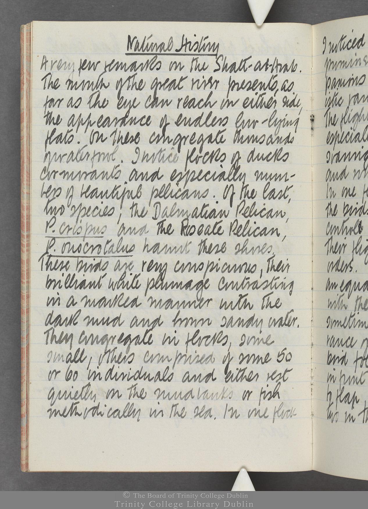 TCD MS 10515 folio 18v
