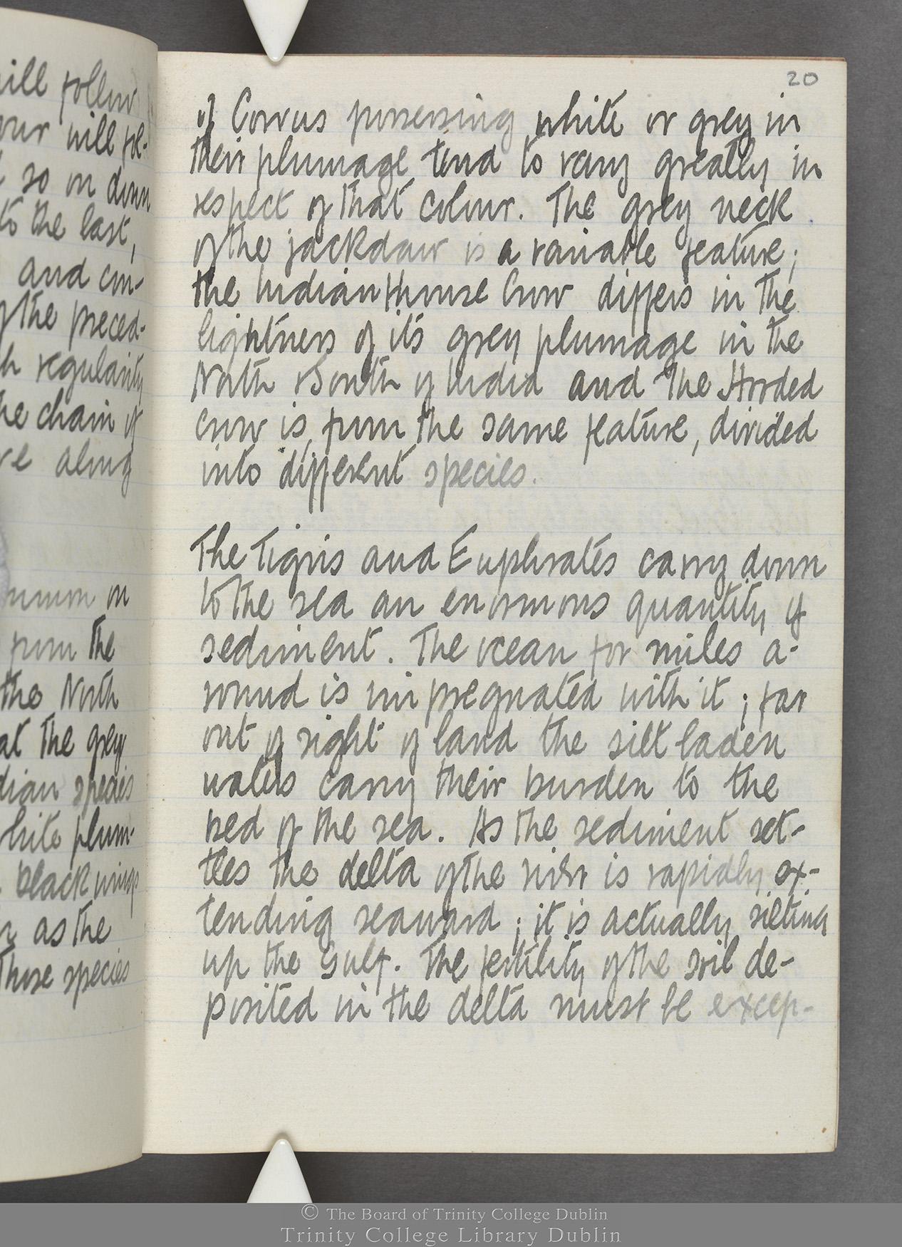 TCD MS 10515 folio 20r