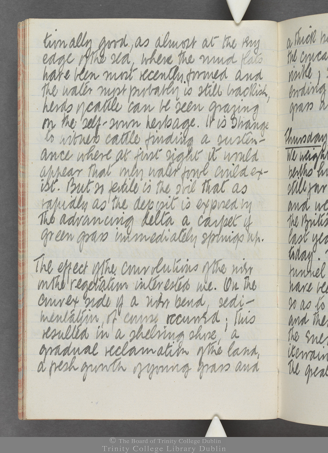TCD MS 10515 folio 20v