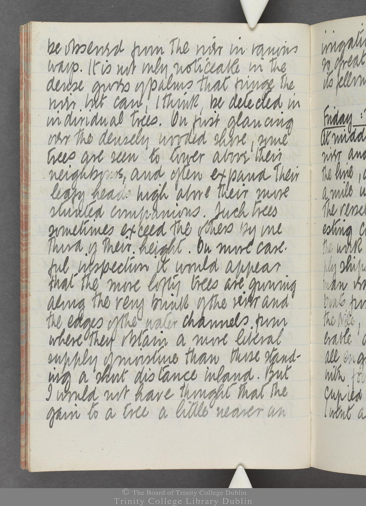 TCD MS 10515 folio 21v