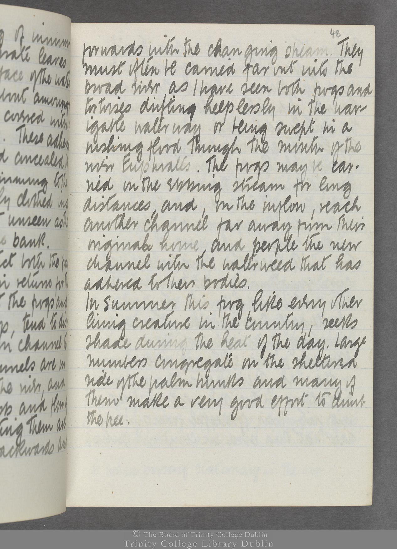 TCD MS 10515 folio 48r