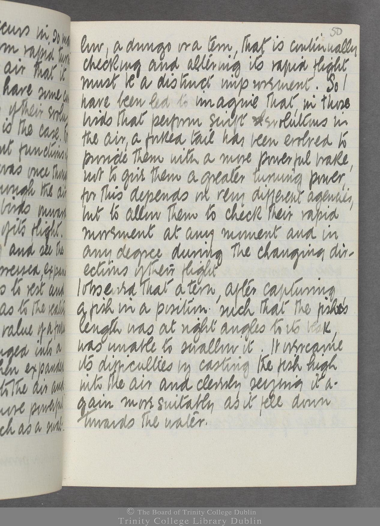 TCD MS 10515 folio 50r