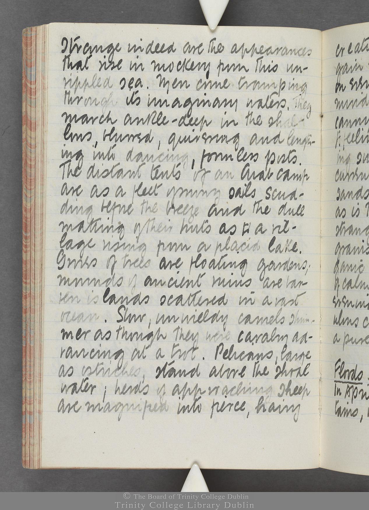 TCD MS 10515 folio 55v