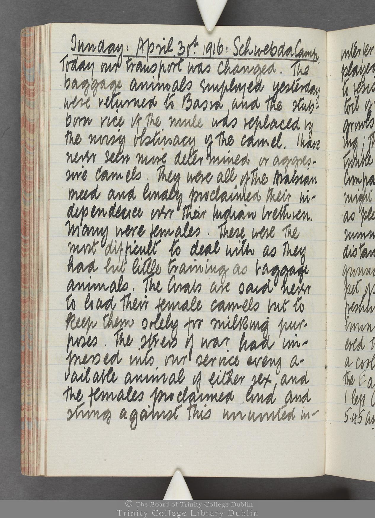 TCD MS 10515 folio 62v