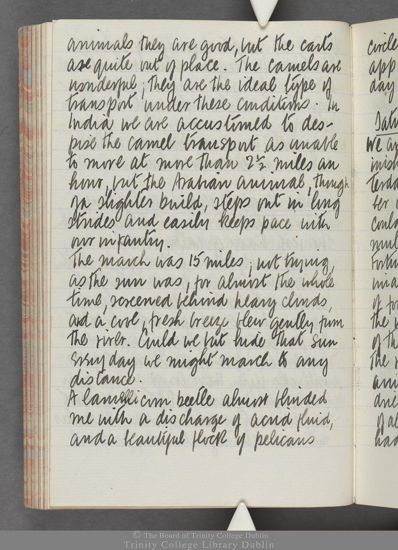 TCD MS 10515 folio 71v