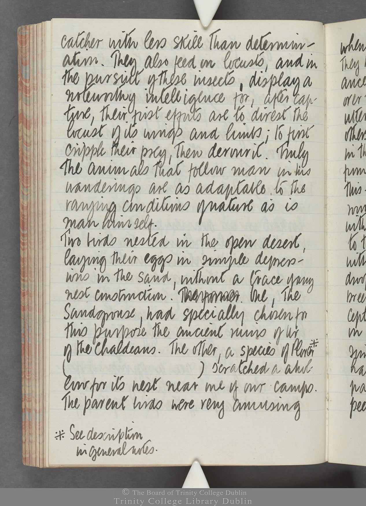 TCD MS 10515 folio 83 verso
