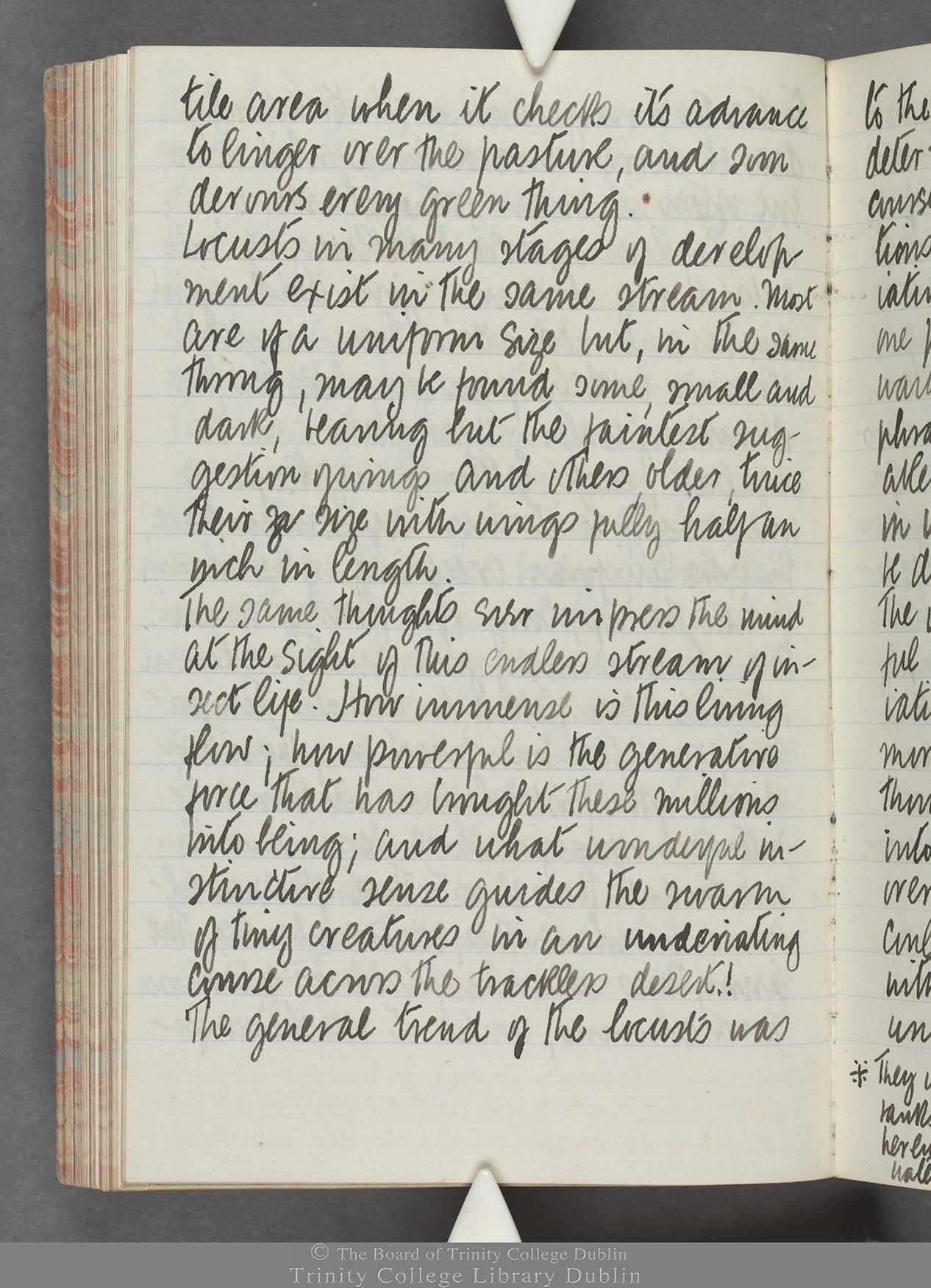 TCD MS 10515 folio 86 verso