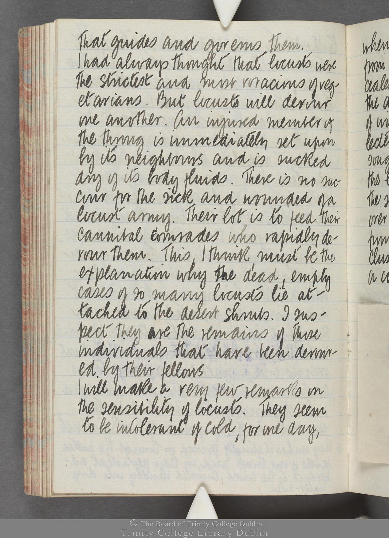 TCD MS 10515 folio 87 verso