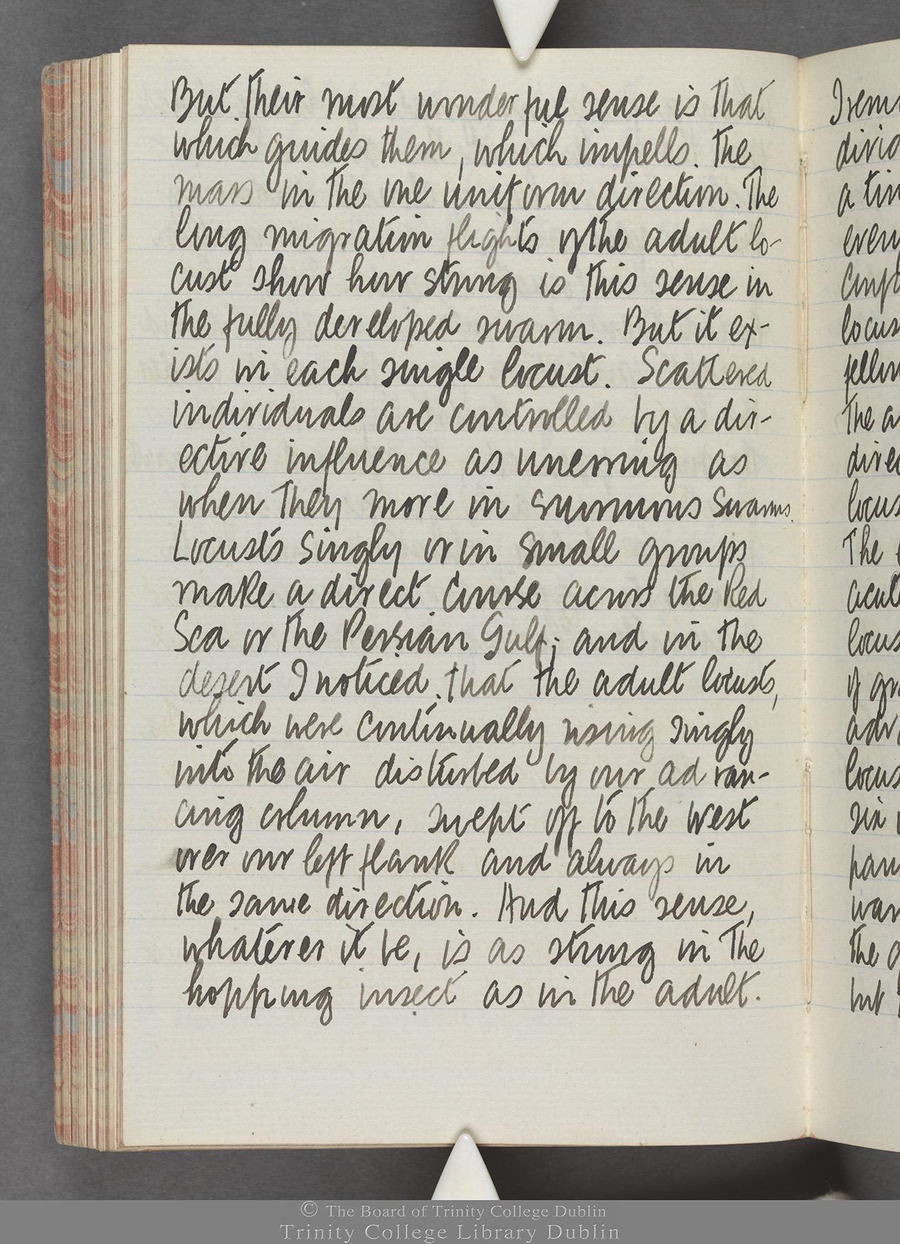 TCD MS 10515 folio 88 verso