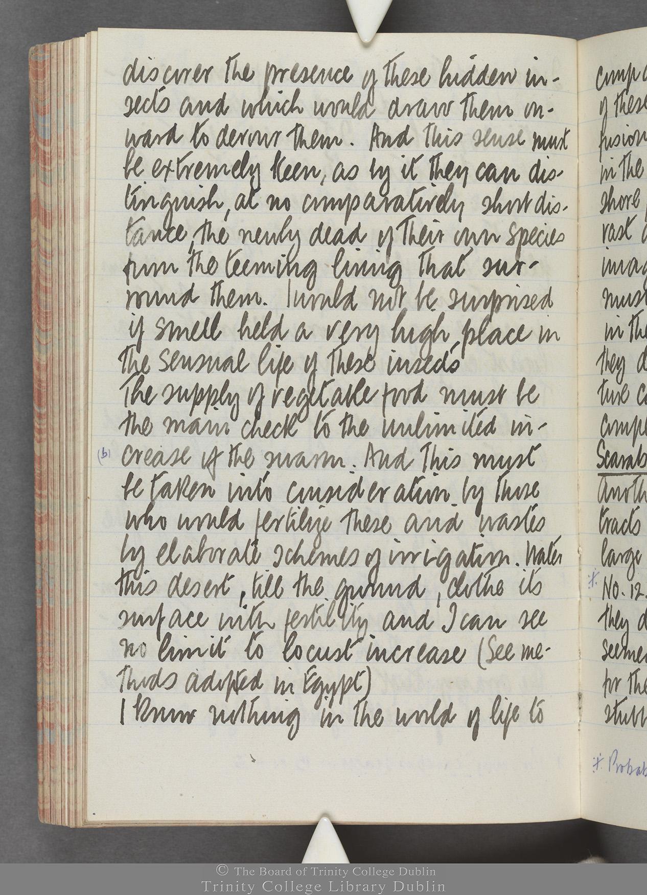 TCD MS 10515 folio 89 verso