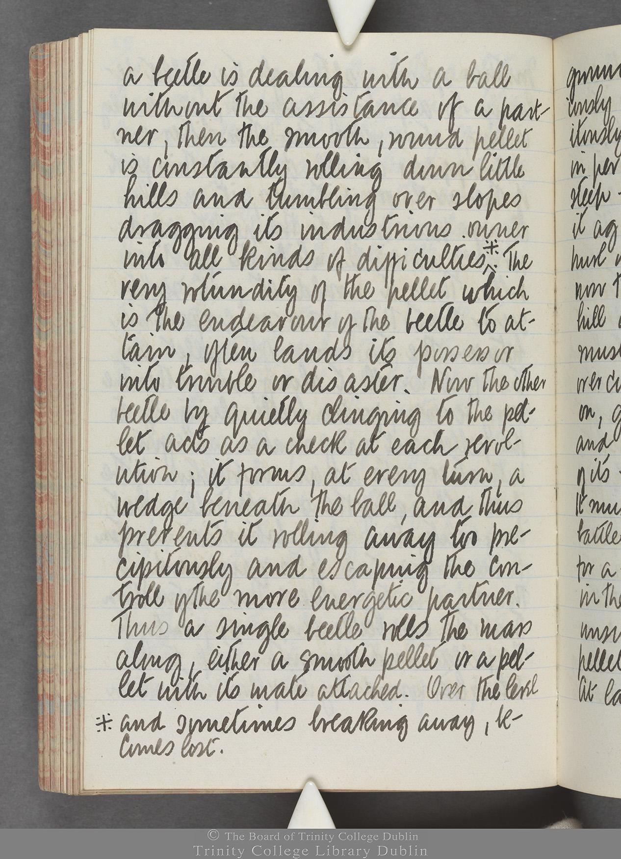 TCD MS 10515 folio 92 verso