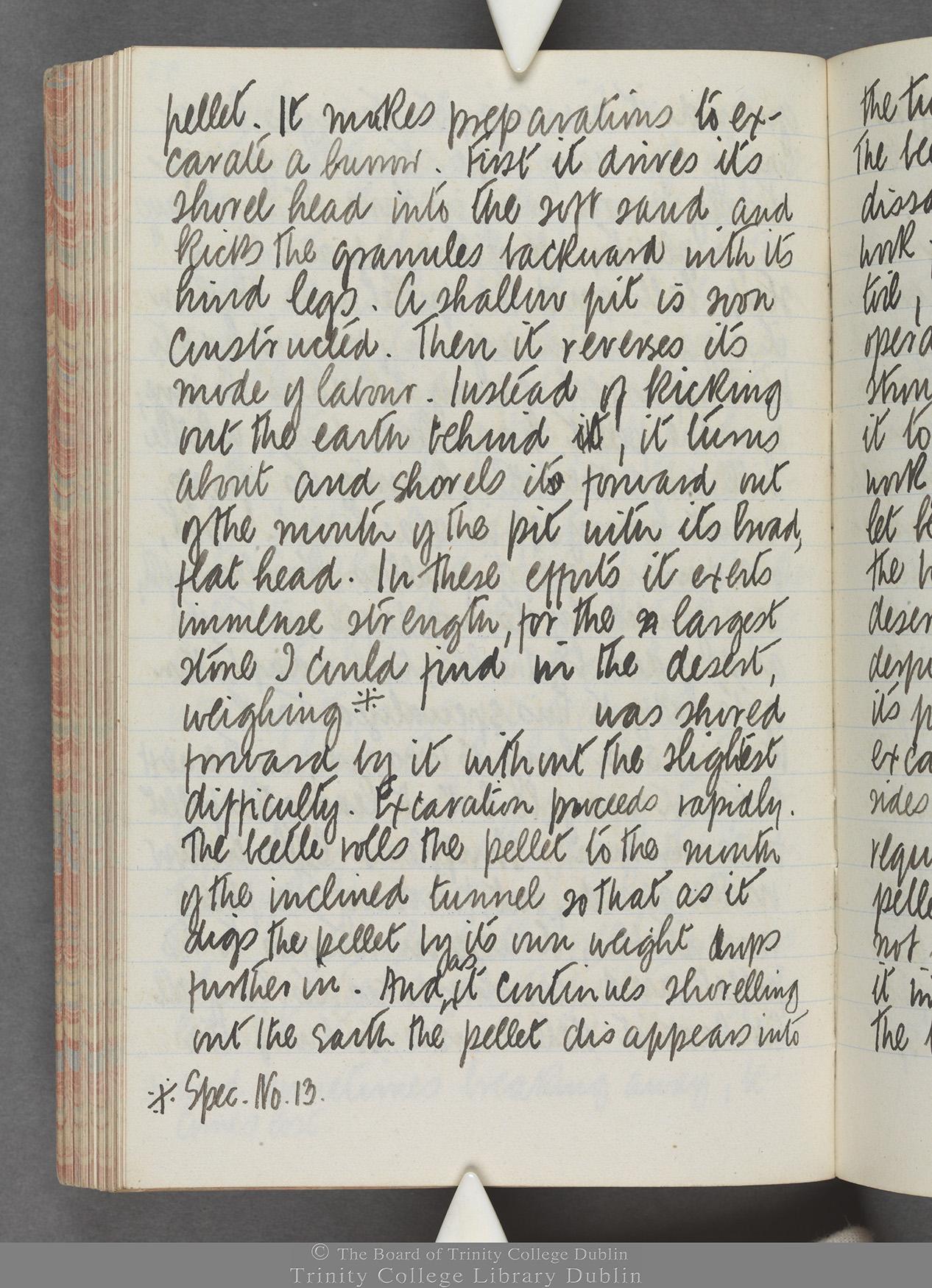 TCD MS 10515 folio 93 verso