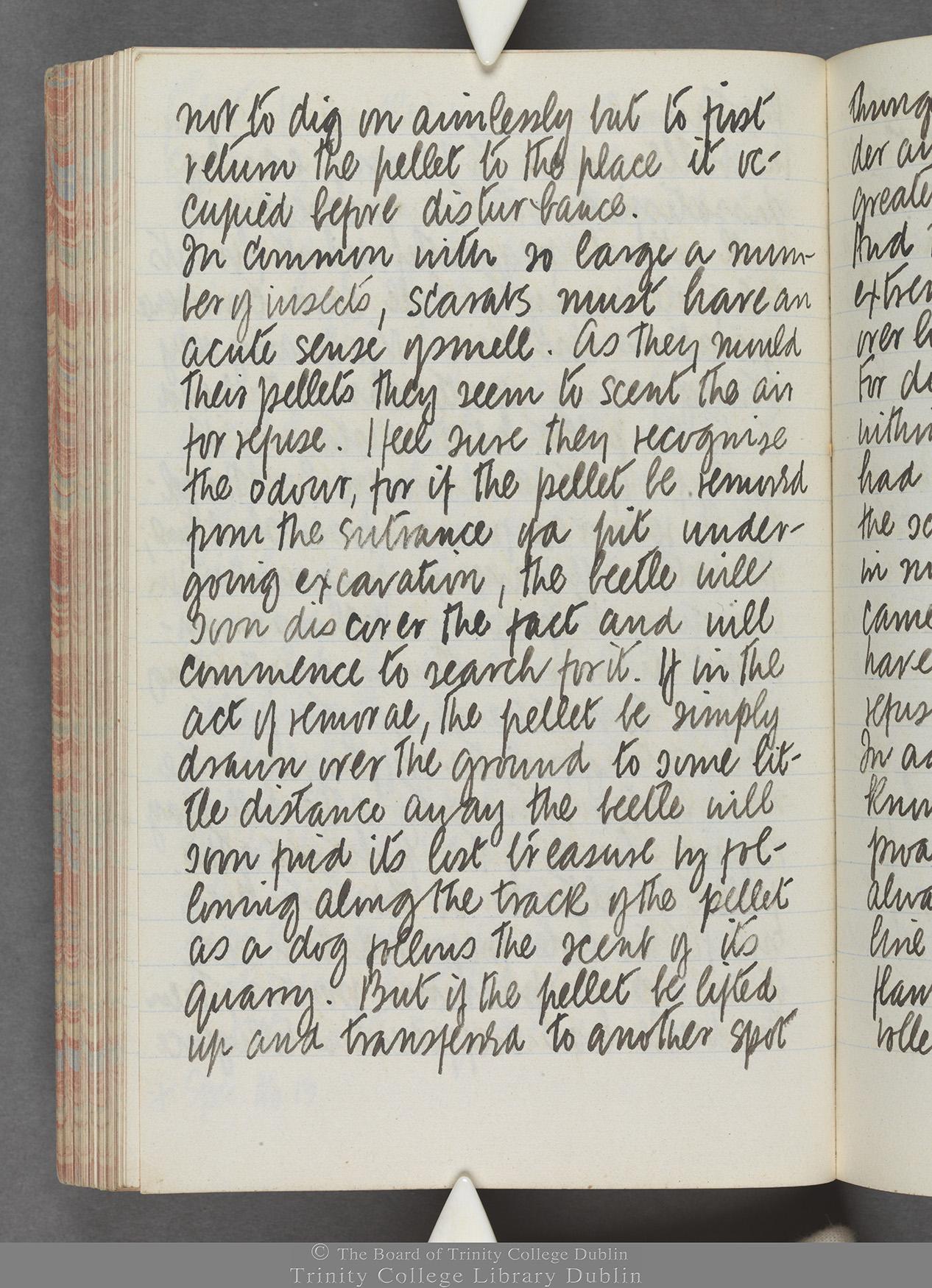 TCD MS 10515 folio 94 verso
