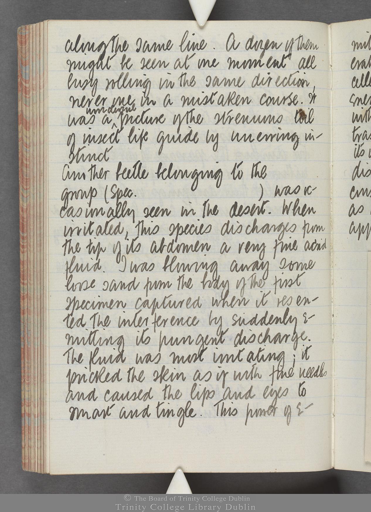 TCD MS 10515 folio 95 verso