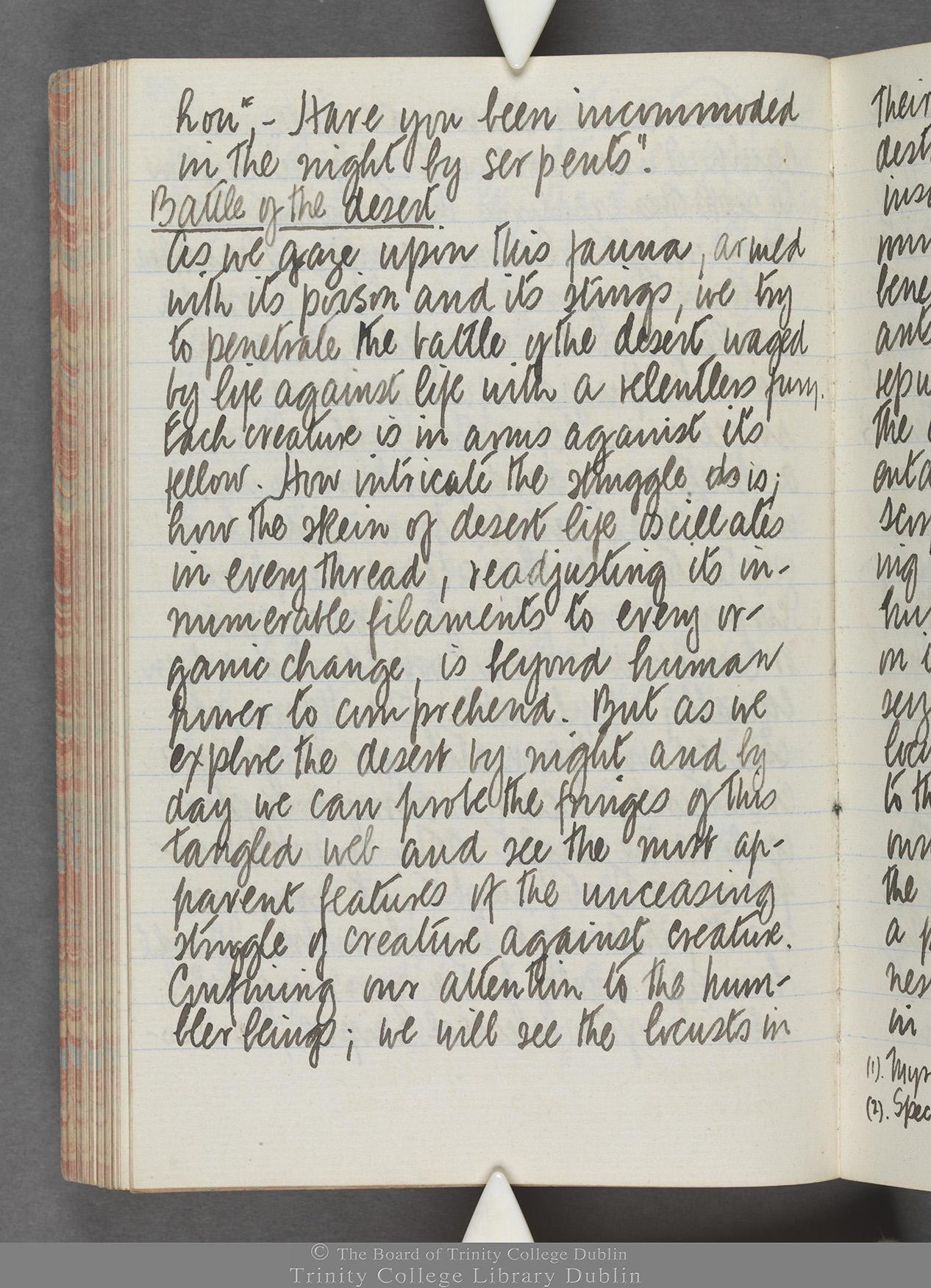 TCD MS 10515 folio 98 verso