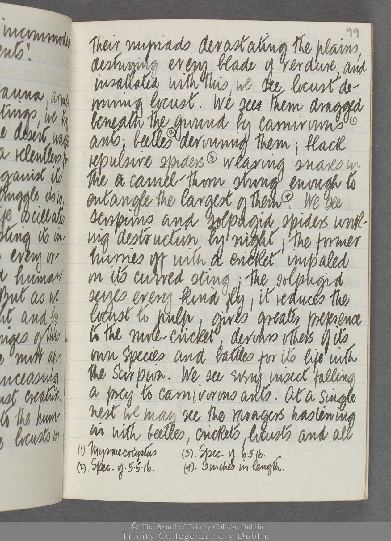 TCD MS 10515 folio 99 recto