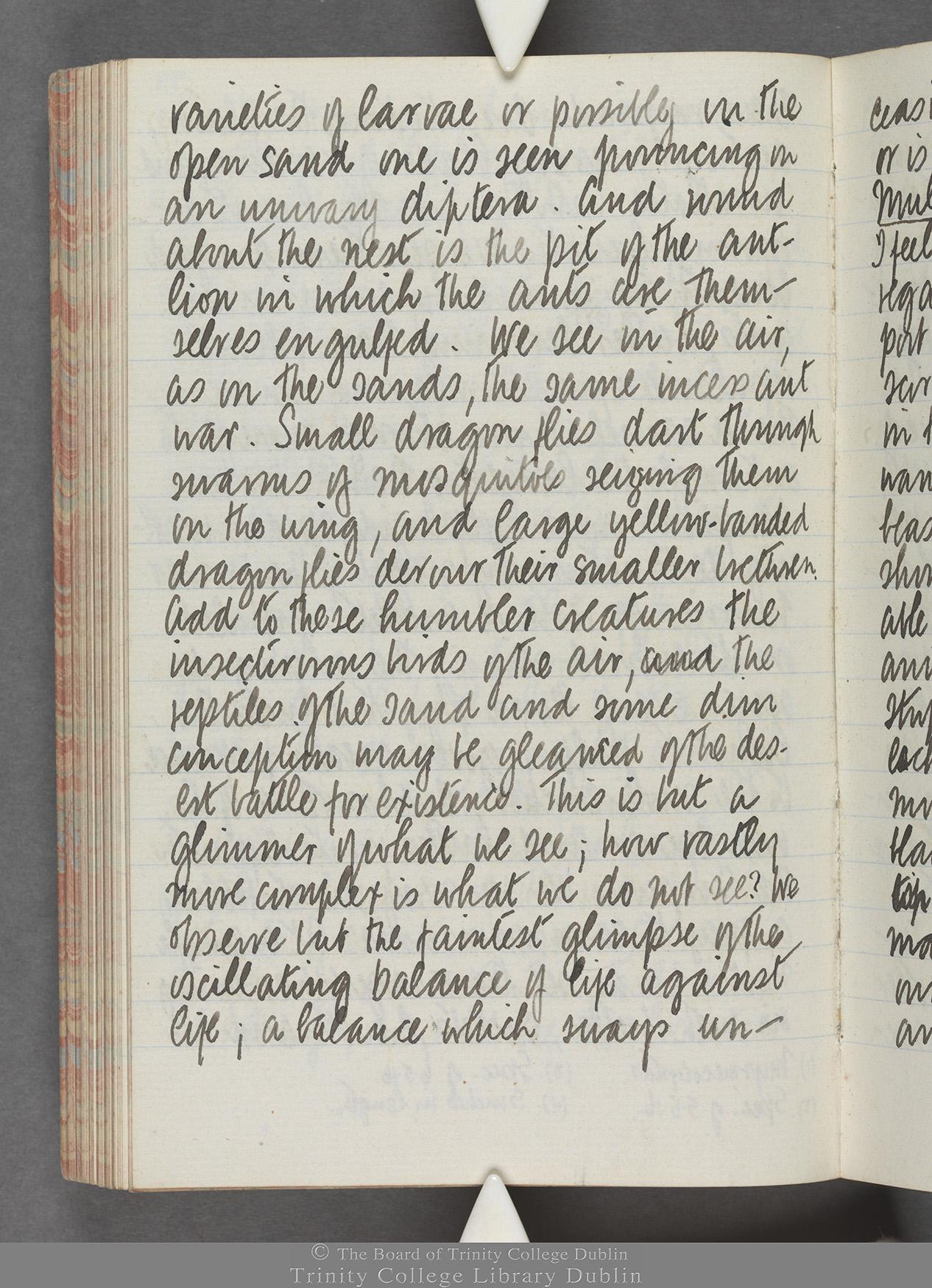 TCD MS 10515 folio 99 verso