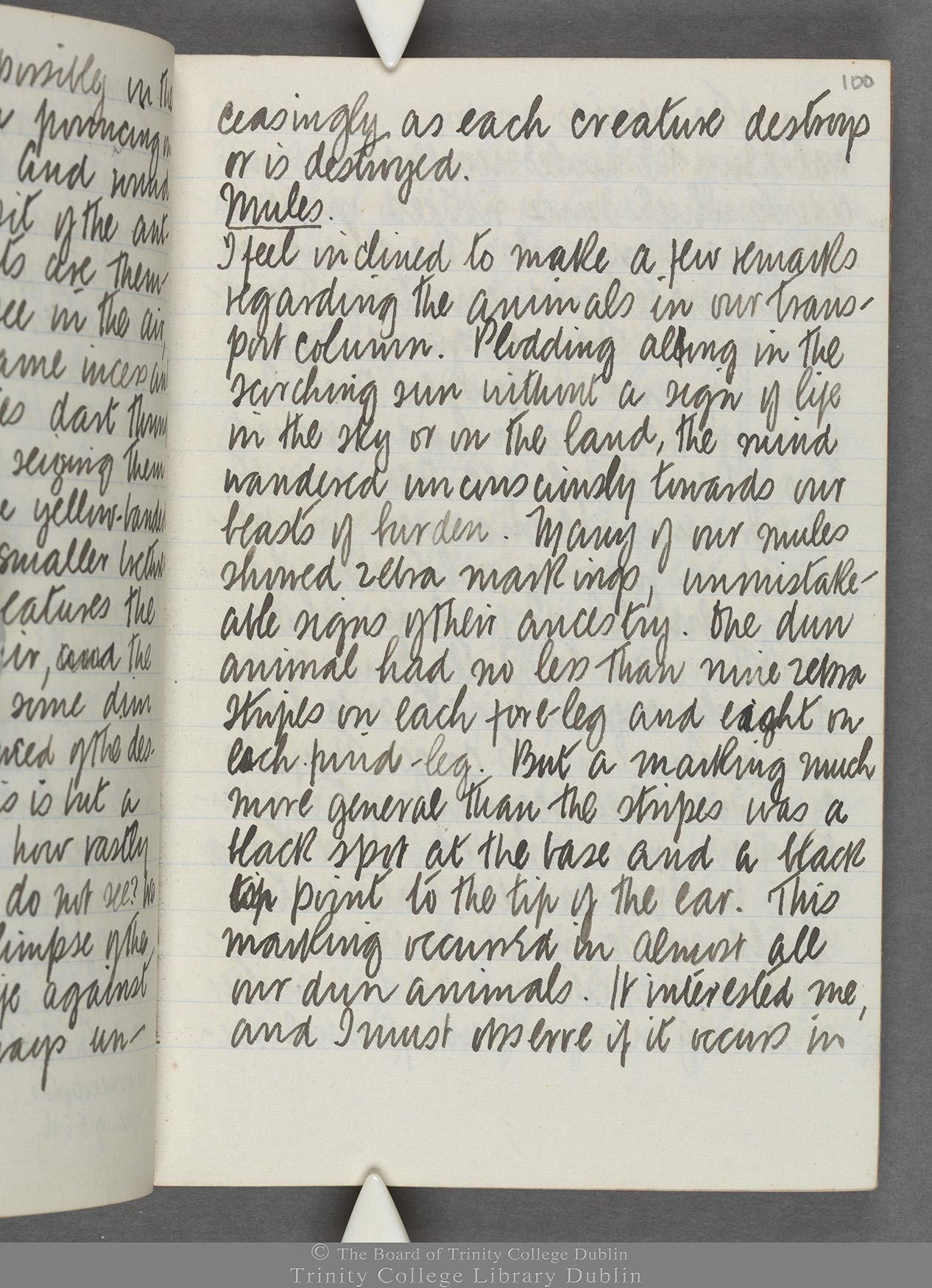 TCD MS 10515 folio 100 recto