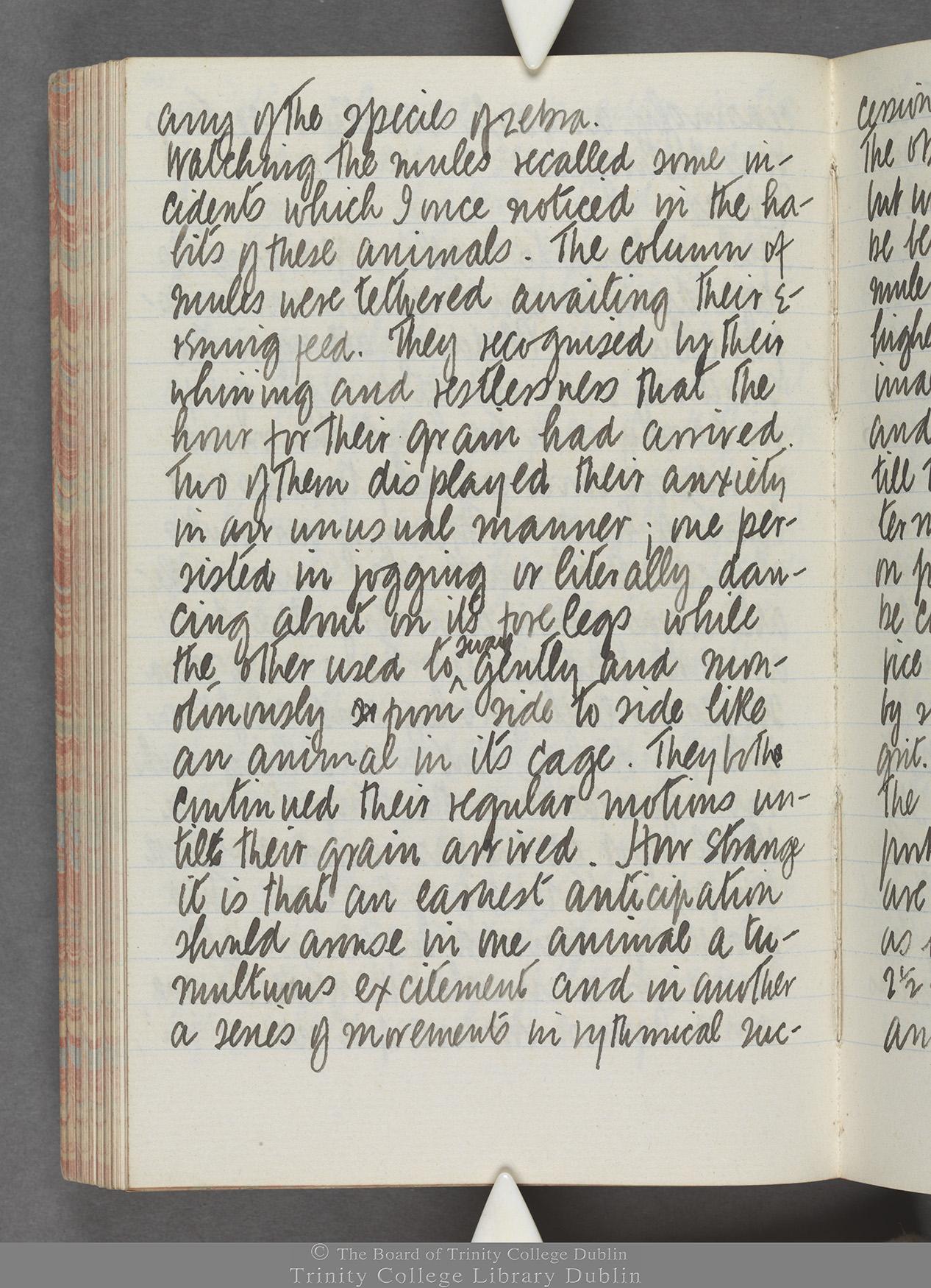 TCD MS 10515 folio 100 verso
