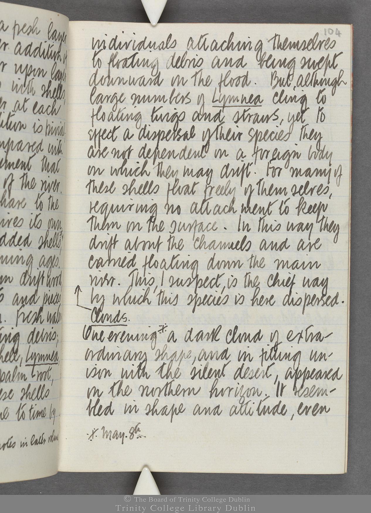 TCD MS 10515 folio 104 recto