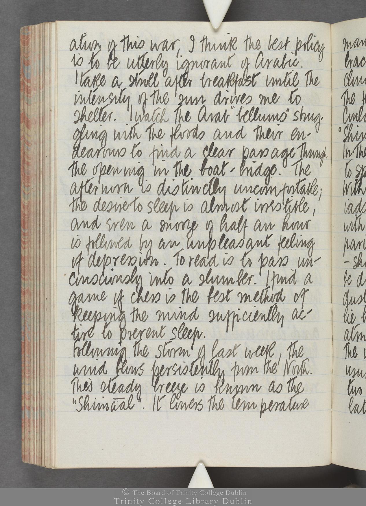 TCD MS 10515 folio 117 verso