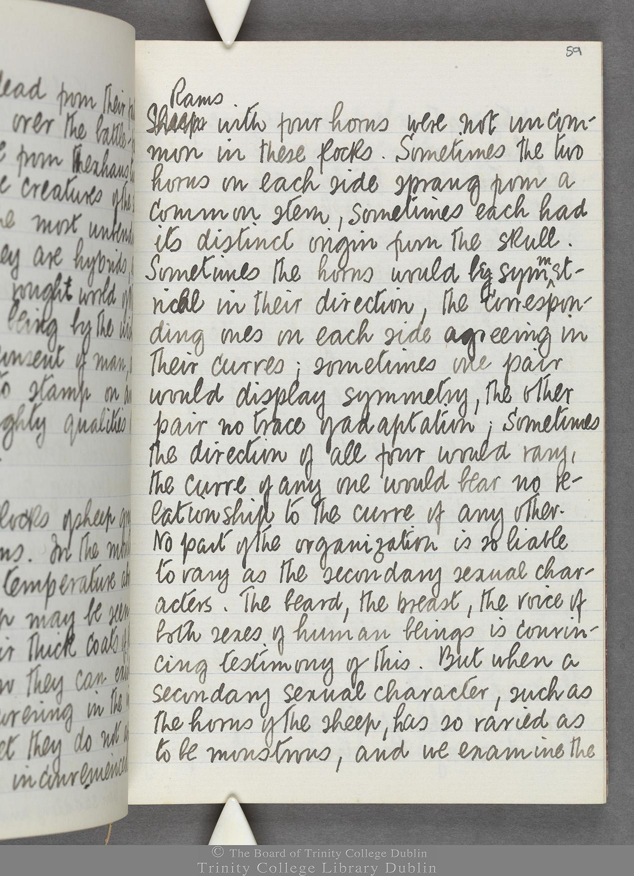 TCD MS 10516 folio 59 recto