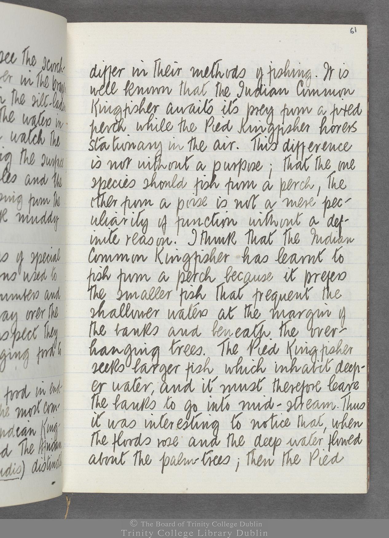 TCD MS 10516 folio 61 recto