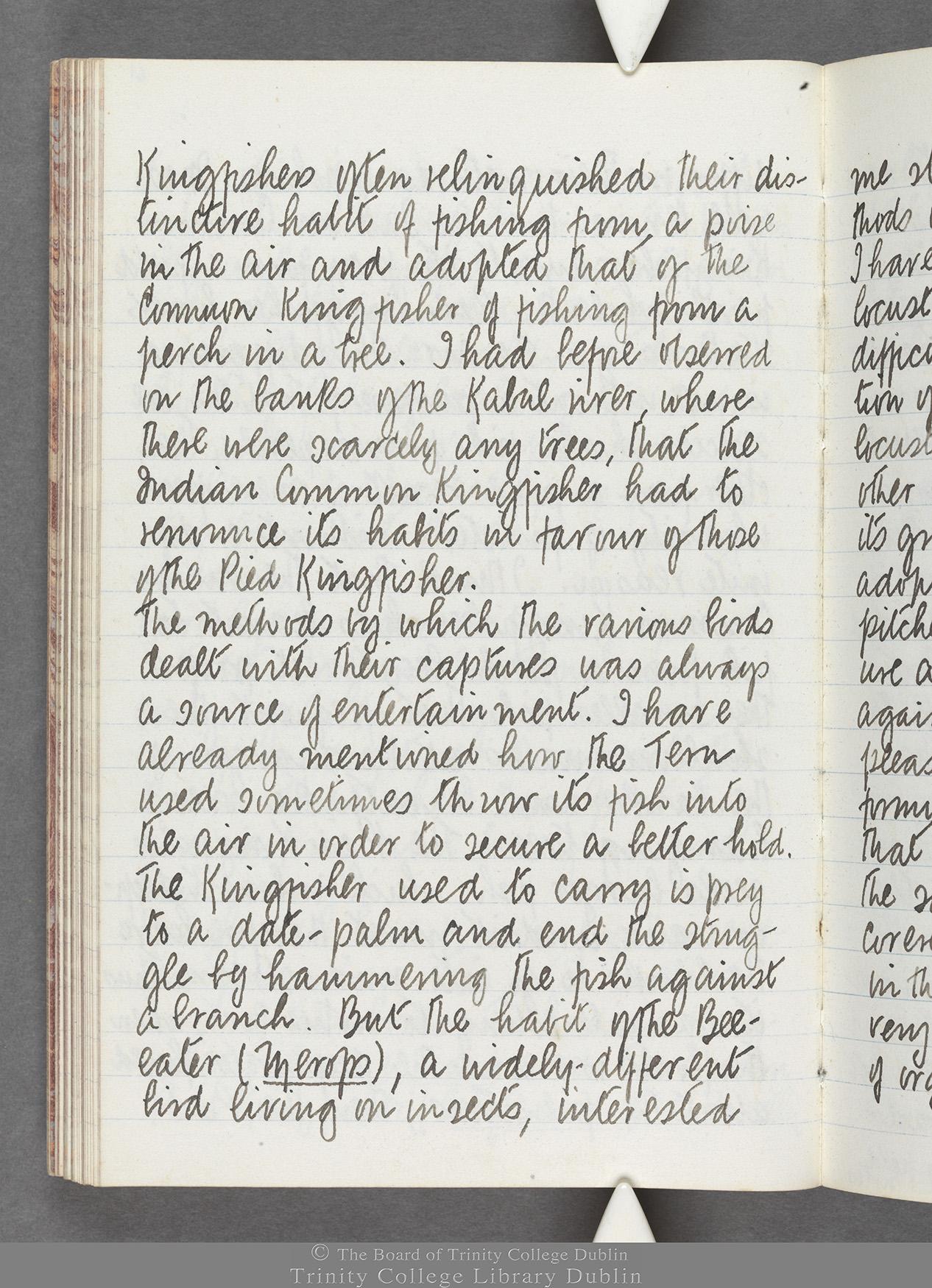 TCD MS 10516 folio 61 verso