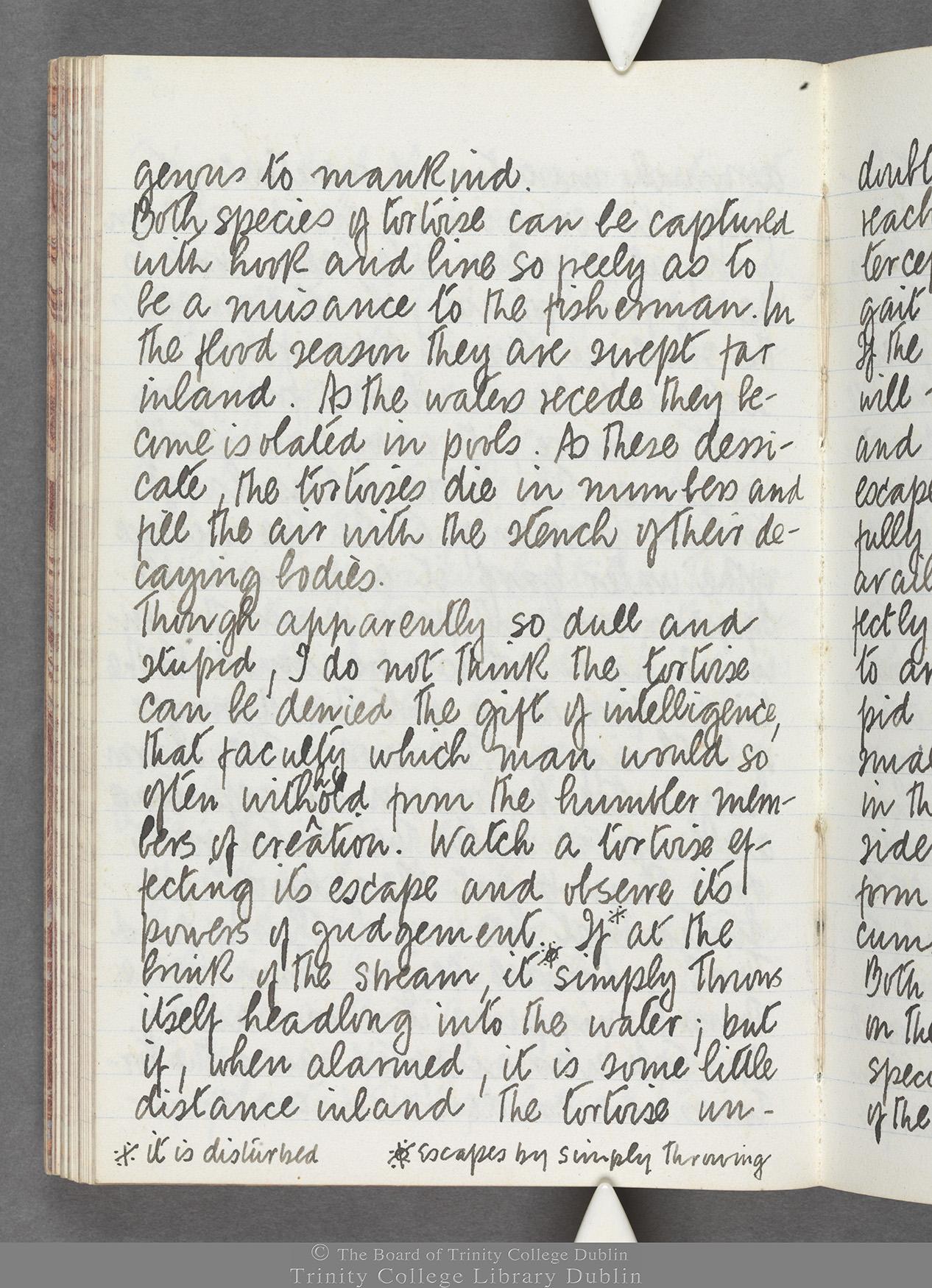 TCD MS 10516 folio 64 verso