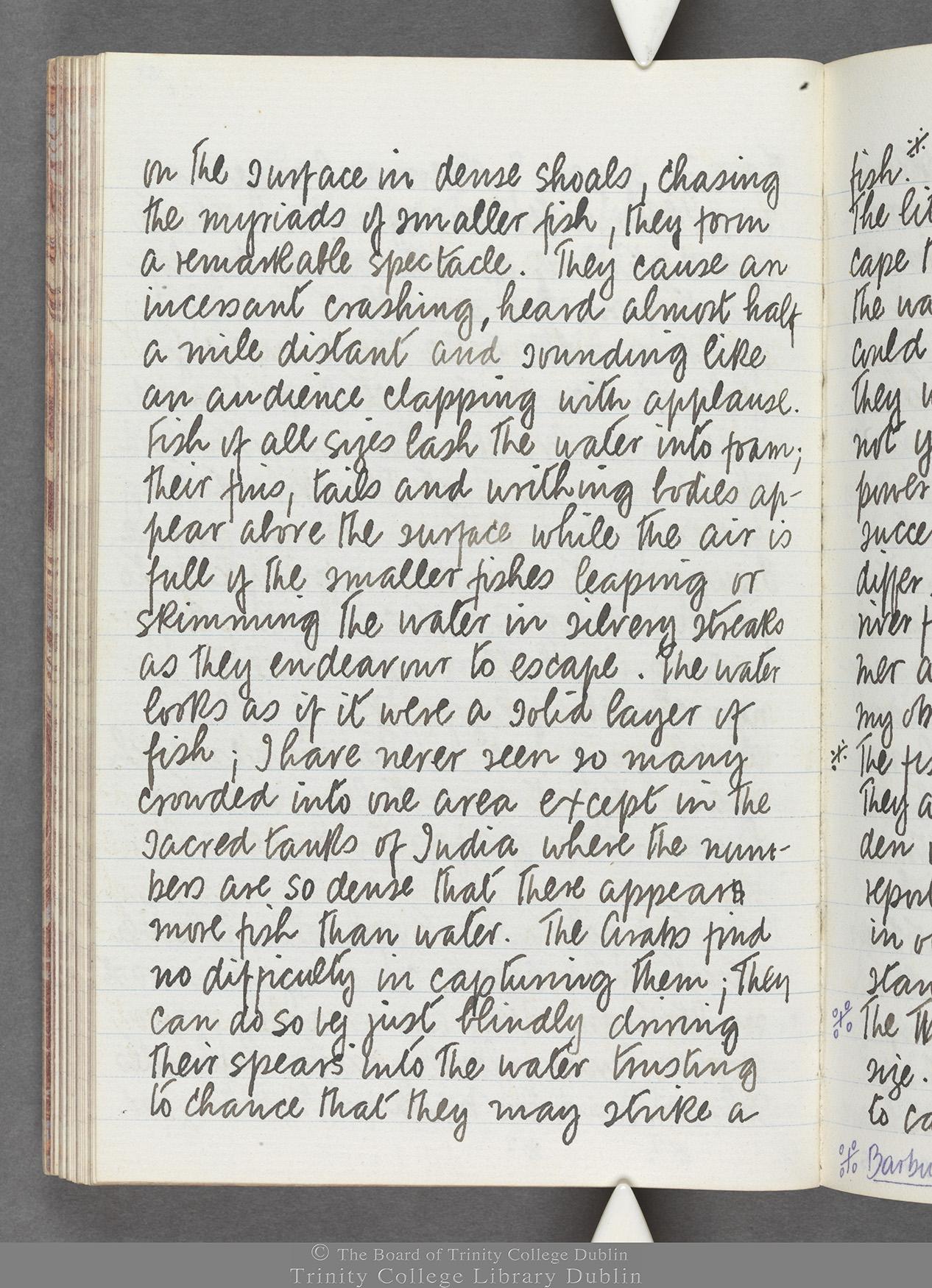 TCD MS 10516 folio 67 verso