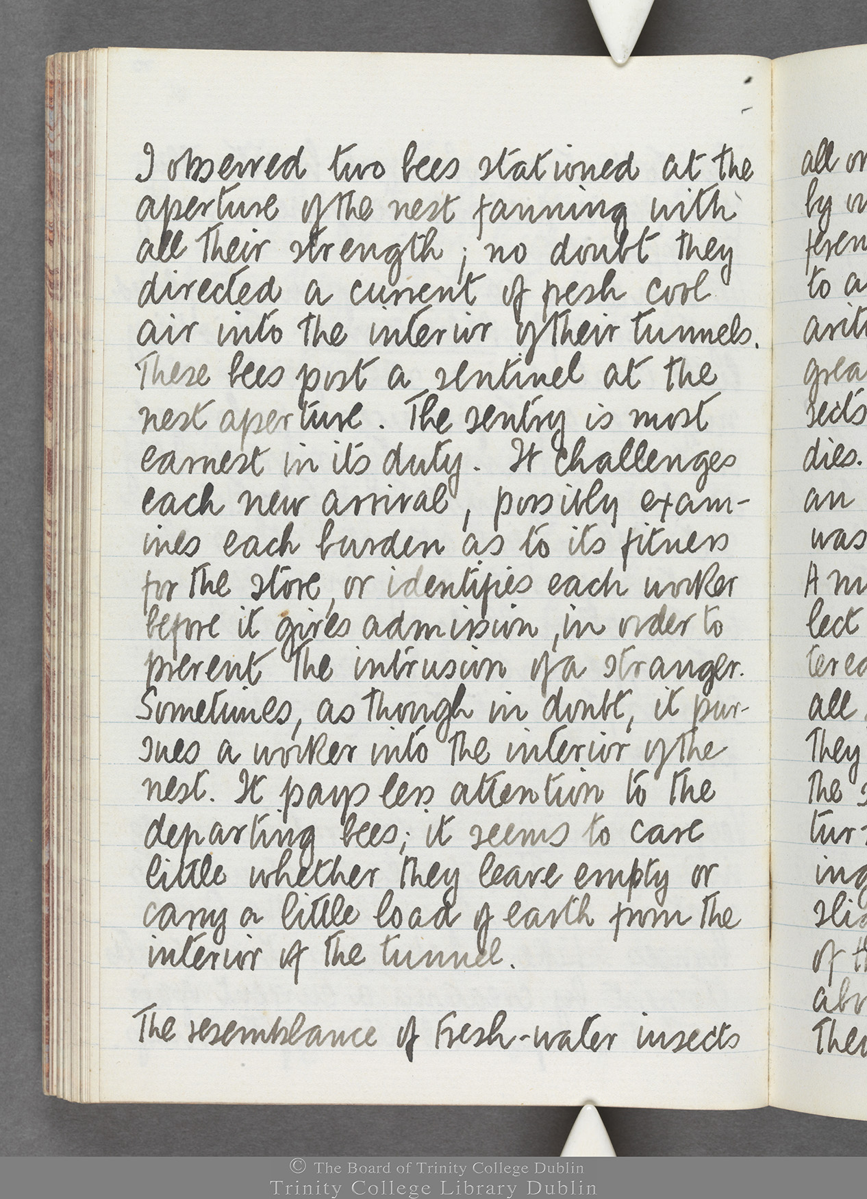 TCD MS 10516 folio 70 verso