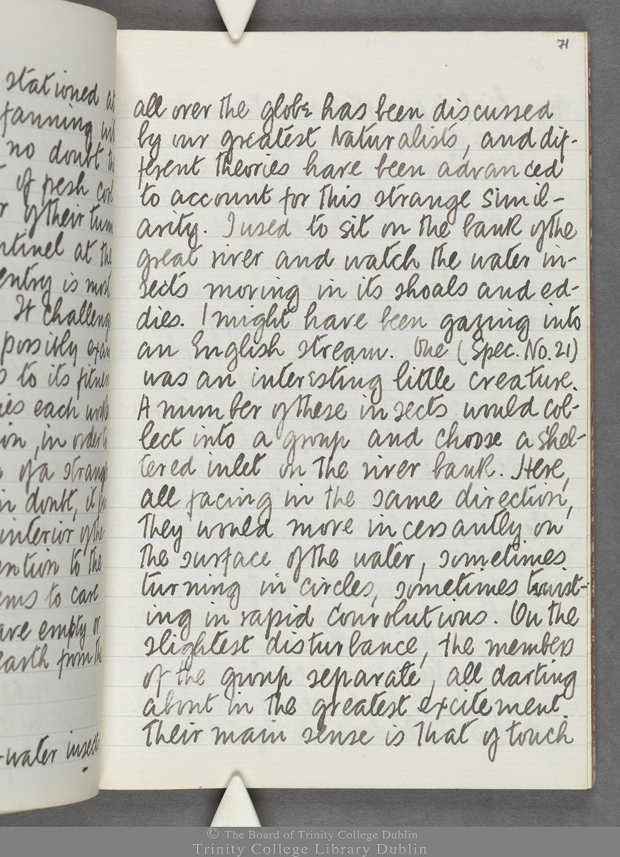 TCD MS 10516 folio 71 recto