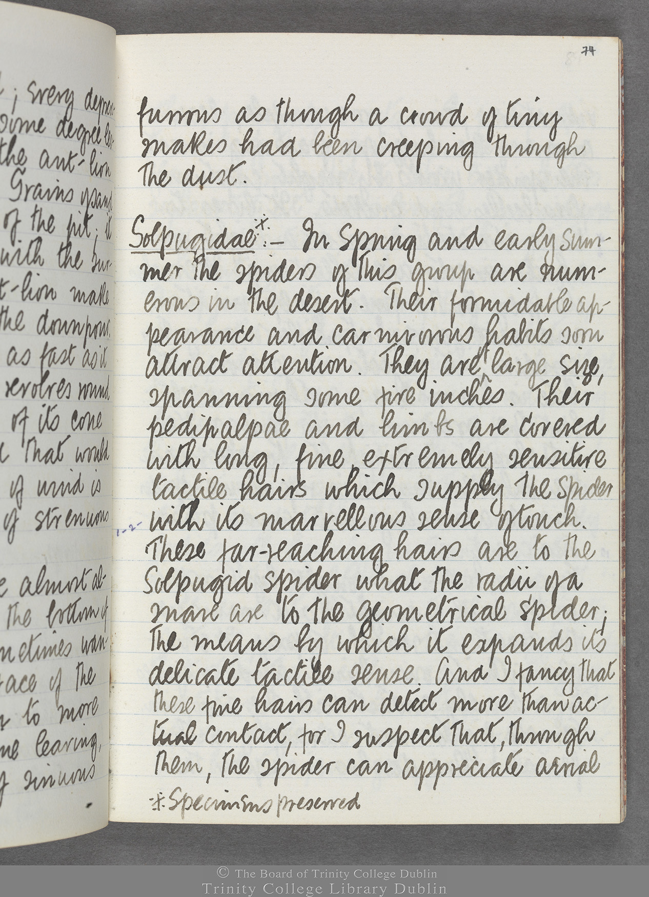 TCD MS 10516 folio 74 recto