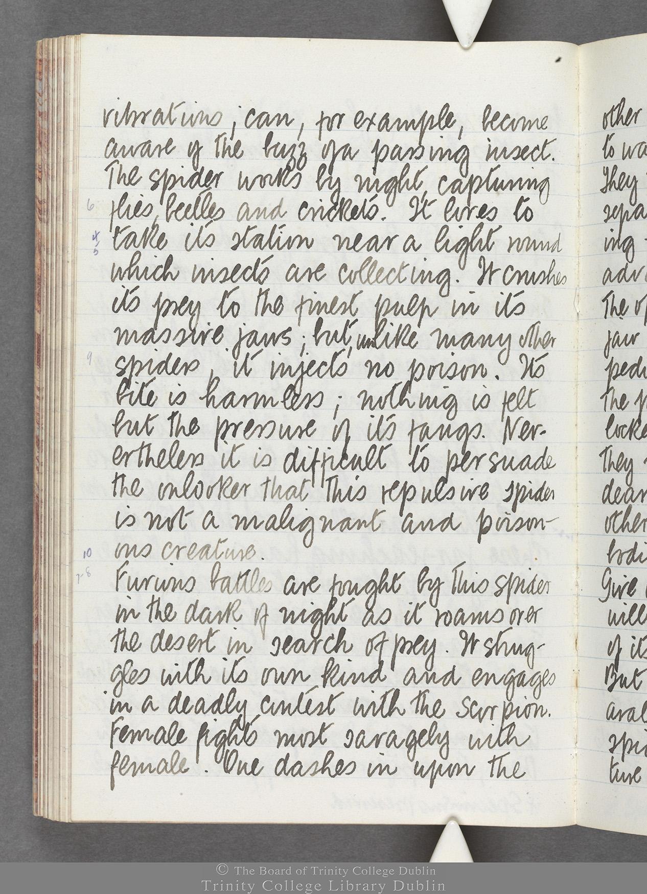TCD MS 10516 folio 74 verso