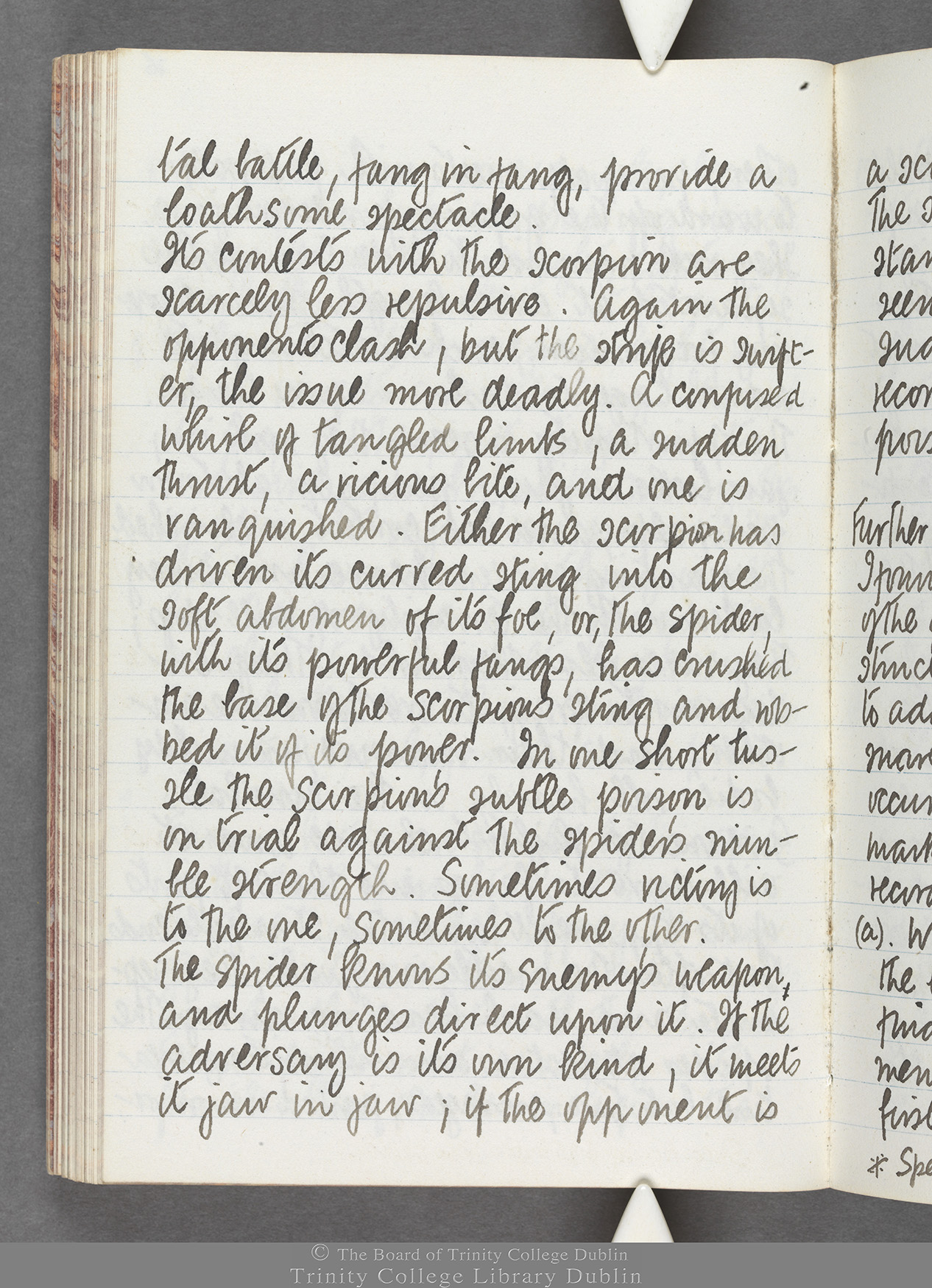 TCD MS 10516 folio 75 verso