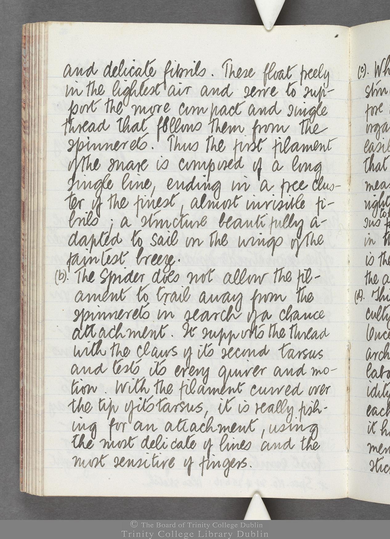TCD MS 10516 folio 76 verso