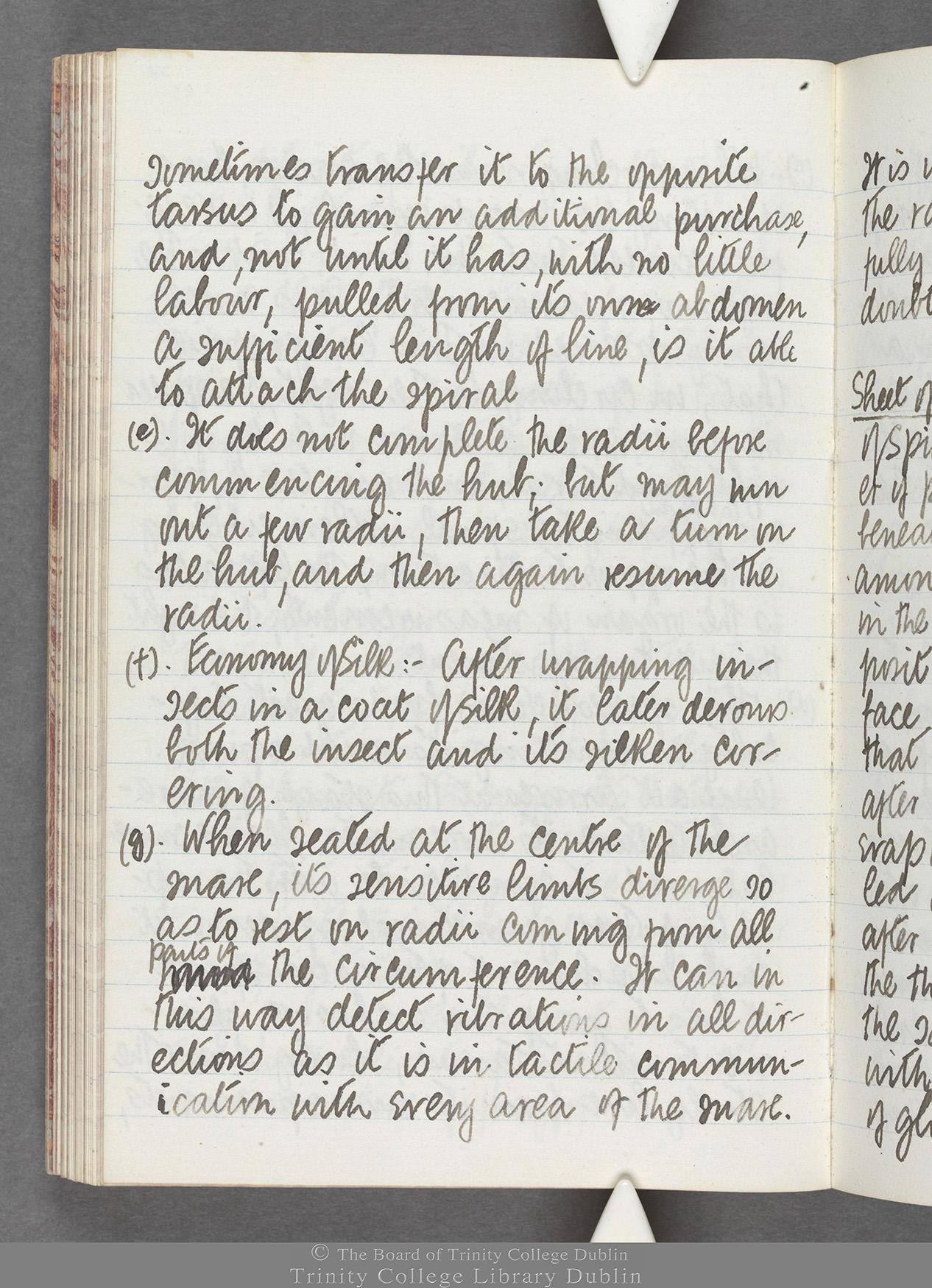 TCD MS 10516 folio 77 verso