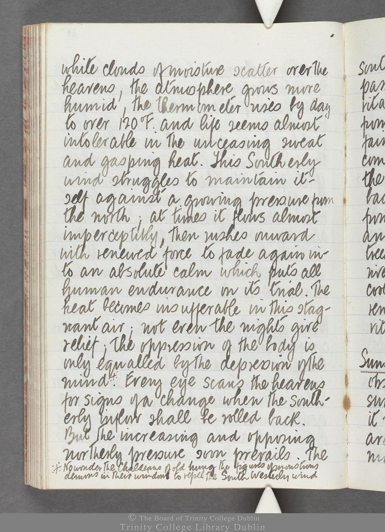 TCD MS 10516 folio 84 verso