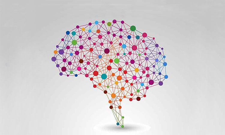 Neuroscience Careers - The University of Texas at Dallas
