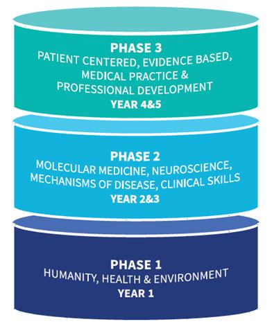 Curriculum - School of Medicine - Trinity College Dublin